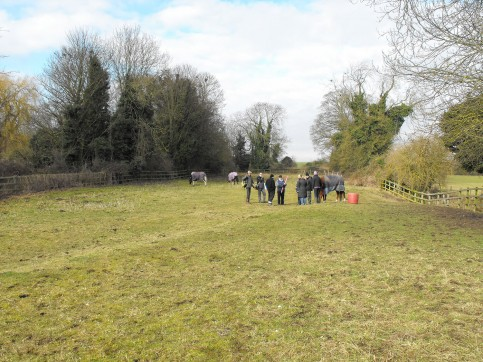 2012 Volunteers getting ready to survey the house platform in the foreground, with help from the horses.